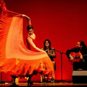 Flamenco Chekara (Marokko/Spanien)